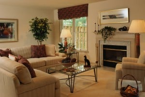 Picture of a living room with furniture