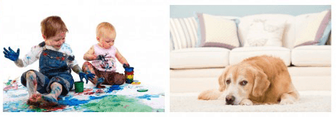 carpet-cleaning-doncaster-kids-dog-stains